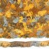 """Пряжа """"SOFIA"""" фантазийная секционного крашения 1 шт. (""""Adelia"""") 90м 50 гр. полиэстер-100%"""