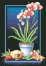 """Набор для вышивки """"Великолепные орхидеи"""" 1 шт. (""""Panna"""" Ц-0223) 21.5см х 32.5см"""
