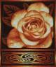 """Набор для вышивки """"Золотистая роза"""" 1 шт. (""""Panna"""" Ц-1021) 30см х 34см"""