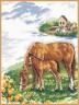 """Набор для вышивки """"Лошадки"""" 1 шт. (""""Алиса"""" 1-03) 22см х 26см"""