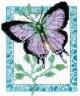 """Набор для вышивки """"Бабочка лиловая"""" 1 шт. (""""Кларт"""" 5-055) 14см х 11см"""