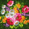 """Канва с рисунком """"Полевые цветы"""" 1 шт. (952) 41см х 41см"""
