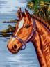 """Канва с рисунком """"Конь"""" серия 10.000 1 шт. (Collection D'Art 10322) 40см х 50см"""