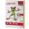 Бумага цветная для офиса А4 80 г/м4 пленка 250 шт. (CREATIVE БОpr-250r) 210мм х 297мм
