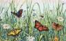 """Набор для вышивки """"Поле бабочек"""" 1 шт. (""""Dimensions"""" 70-35271) 35см х 22см"""