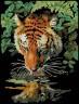 "Набор для вышивки ""Тигр"" 1 шт. (""Dimensions"" 06961) 13см х 18см"