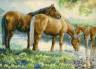 """Набор для вышивки """"Лошади у источника"""" 1 шт. (""""Dimensions"""" 35174) 38см х 51см"""