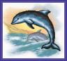 """Набор для вышивки """"Дельфины"""" 1 шт. (""""Panna"""" Р-0953) 23см х 24.5см"""