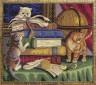 """Набор для вышивки """"Котята с книгами"""" 1 шт. (""""Panna"""" Ж-1053) 34см х 29см"""