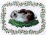 """Набор для вышивки """"Зайчонок"""" 1 шт. (""""Кларт"""" 2-037) 11см х 14см"""