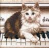 """Набор для вышивки """"Кошка на пианино"""" 1 шт. (""""РС студия"""" С-466H) 31.5см х 30см"""