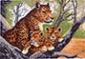 """Канва с рисунком """"Гепард с малышами"""" 1 шт. (615) 33см х 45см"""
