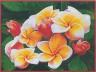 """Набор для вышивки """"Оранжевое настроение"""" 1 шт. (""""Pinn"""" СХ-EV-172) 41см х 30см"""